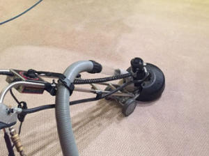Carpet_Cleaning_Perth 2