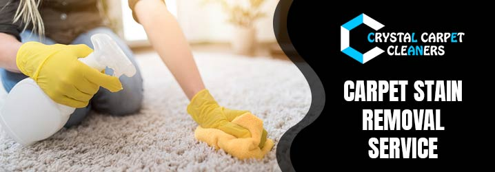 How to Clean Kitchen Carpets?